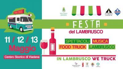 Festa del Lambrusco e Food Truck - Viadana (MN) - 11, 12, 13 maggio