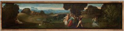 Dalla natura le immagini svelate: curiosità e leggende - Padova