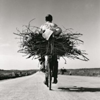 Fulvio Roiter - Fotografie 1948-2007 - Venezia - 16 marzo 26 agosto