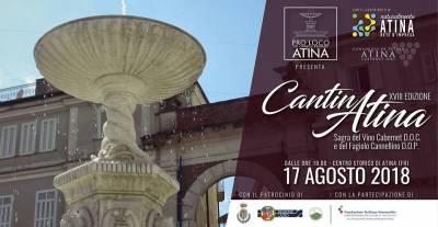 Cantina Atina 2018