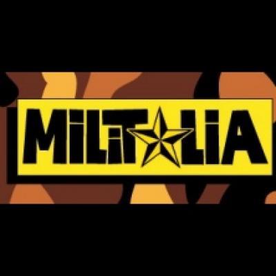 Militalia - Segrate (MI) - 3 e 4 novembre