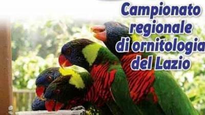 Campionato di ornitologia Lazio, locandina