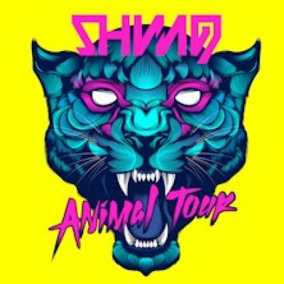 Shining, cover Animal tour