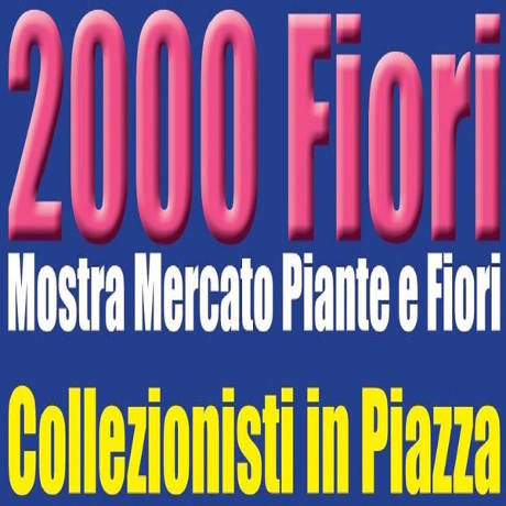 Fiori e Collezionisti in piazza - Scarperia (FI) - 22 aprile