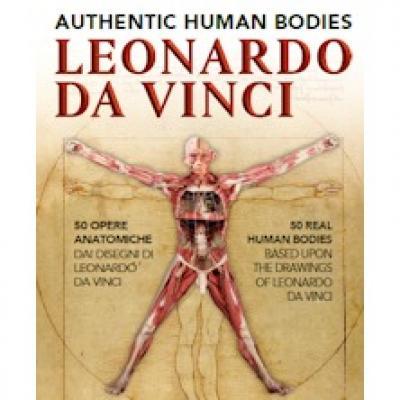 Leonardo Da Vinci: Authentic Human Bodies - Venezia - fino al 30 ottobre