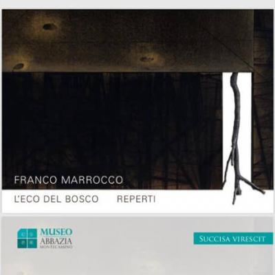 Franco Marrocco - mostra l'eco del bosco, Cassino 2019