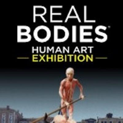Real Bodies Human Art Exh
