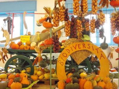 La Casa delle Zucche - Andezeno (TO) - fino al 10 novembre