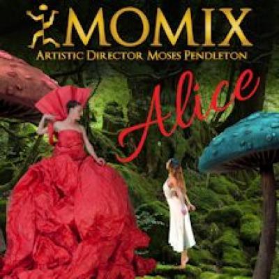 Alice by Momix - Cosenza - 8 e 9 novembre