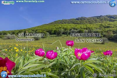 Escursione a Cima San Vicino e Canfaito - maggio 2017